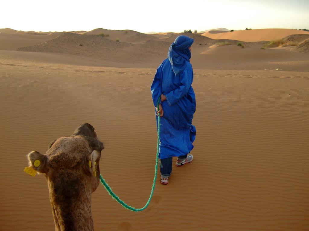 tuaregi maroko