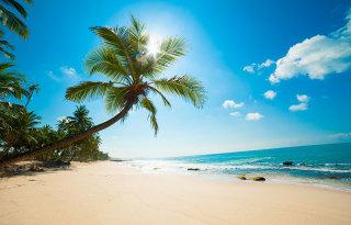 bahami-manjša