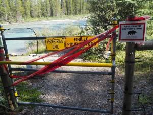 ograda za zaščito pred medvedi v kampu Lake Louise