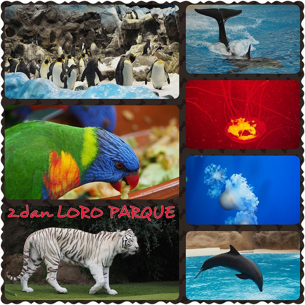 Loro Parque