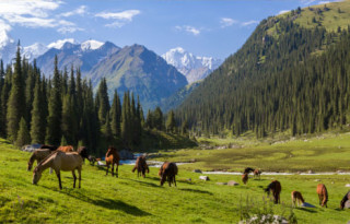 kirgizistan-naslovna