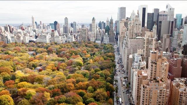 new-york-naslov-jesen