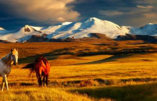 mongolija-naslovna
